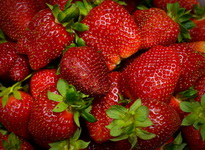 Berry_Strawberry_Closeup_566253_1280x936 - копия